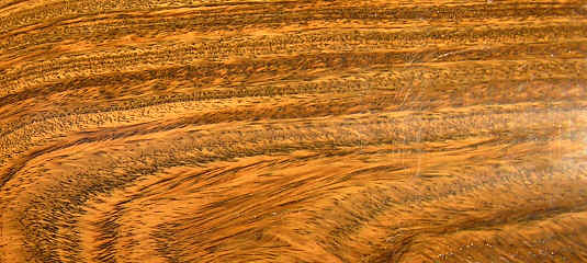 Semi ot does anybody have a source for dogwood lumber